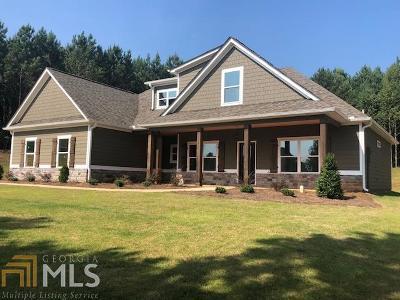 Williamson Single Family Home For Sale: 679 Ashley Glen Dr