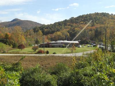 Rabun County Commercial For Sale: 811 Highway 441 N