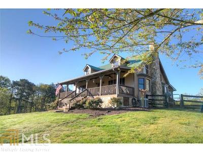 Floyd County, Polk County Single Family Home For Sale: 154 Bryant Rd