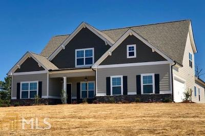 Newnan Single Family Home Under Contract: Ga Hwy 16 #7