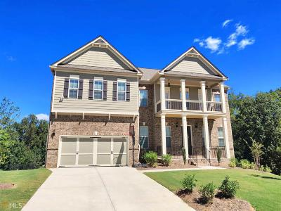 Gwinnett County Single Family Home New: 4630 Point Rock Dr #19