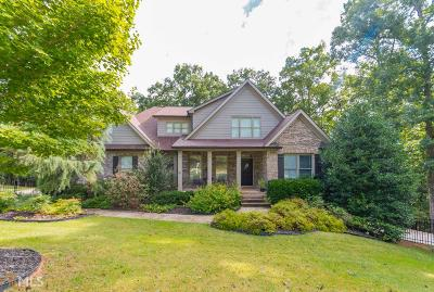 Monroe, Social Circle, Loganville Single Family Home For Sale: 2117 Seths Ridge