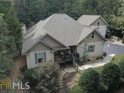Blairsville Single Family Home Under Contract: 138 The Landing