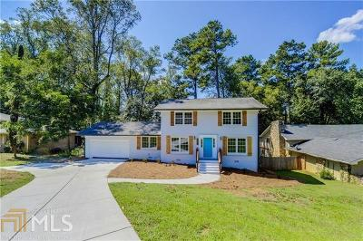Stone Mountain Single Family Home New: 505 S Rays Rd