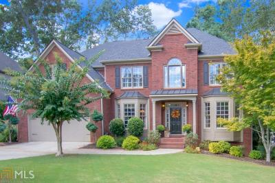 Dawson County, Forsyth County, Gwinnett County, Hall County, Lumpkin County Single Family Home New: 387 Vista Lake Dr