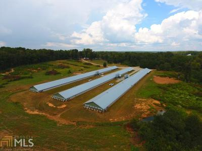Madison Farm For Sale: 3753 Greensboro Hwy