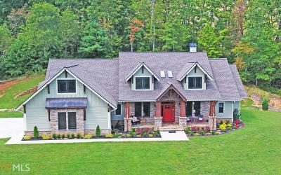 Blairsville Single Family Home For Sale: 606 Concord Way