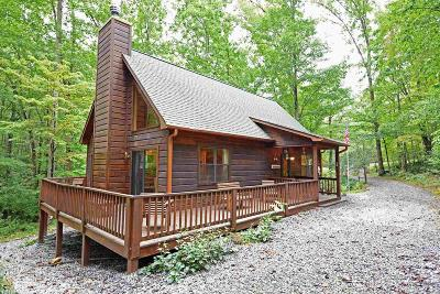 Blairsville Single Family Home Under Contract: 3512 Ga 180