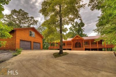Fannin County Single Family Home Under Contract: 19 Bear Pause