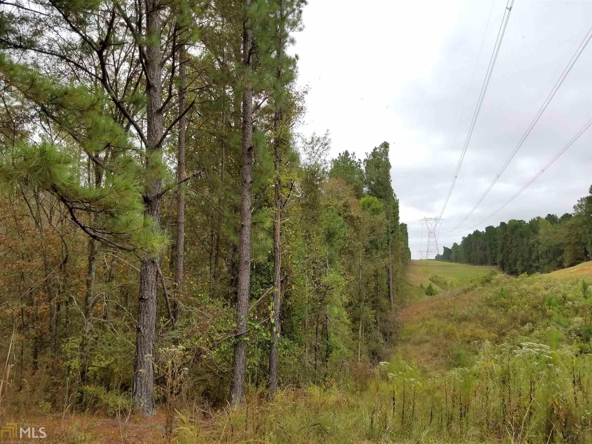 8 69 acres in Juliette for $98,000