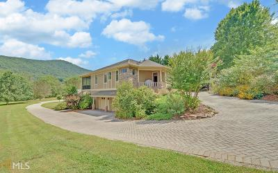 Hiawassee Single Family Home For Sale: 4697 Arrowhead Rd