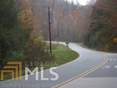 Lumpkin County Commercial For Sale: Long Branch
