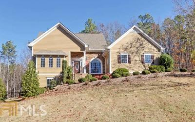 Clarkesville Single Family Home For Sale: 793 Cherry Ct