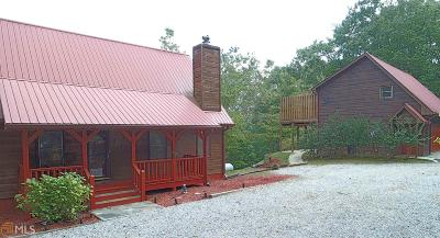 Helen GA Single Family Home New: $420,000