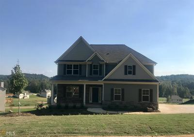 Dawsonville Single Family Home For Sale: 215 Odgers Trl