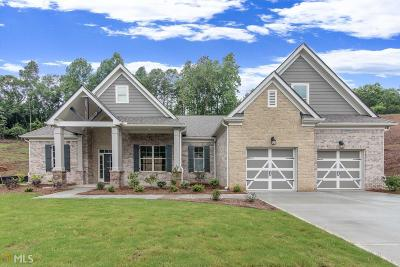 Hall County Single Family Home New: 3506 Dockside Shores Dr