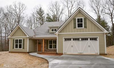 Blairsville Single Family Home For Sale: 1376 Byers Rd