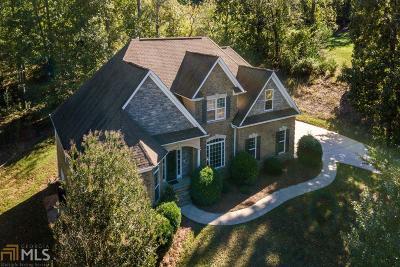 Mcdonough Single Family Home For Sale: 509 Arrowhead Dr