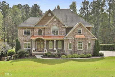 Newnan Single Family Home For Sale: 154 Sky Vw Ct
