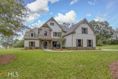 Senoia Single Family Home For Sale: 14 Odom Rd