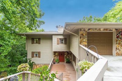 Jasper Single Family Home For Sale: 172 Little Hendricks Mountain