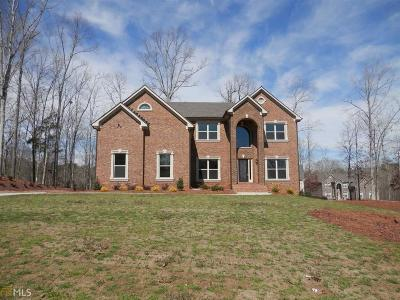McDonough Single Family Home For Sale: 1025 Herb Ct #147