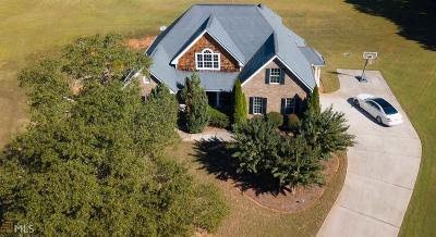 McDonough Single Family Home For Sale: 4220 Terri Ct