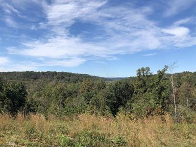 Lumpkin County Commercial For Sale: Brandy Mountain Rd