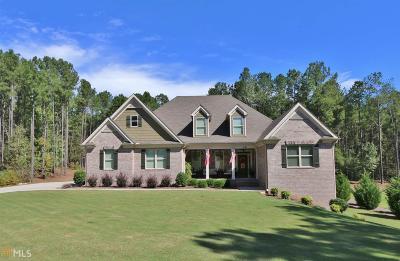 Rutledge Single Family Home For Sale: 241 Hidden Springs Dr