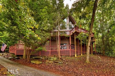 Gilmer County Single Family Home For Sale: 317 Johns Way