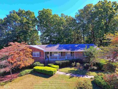 Smyrna Single Family Home For Sale: 3975 Ridge Rd