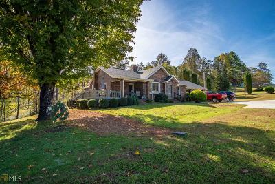 Hiawassee Single Family Home For Sale: 6136 Us Highway 76 E