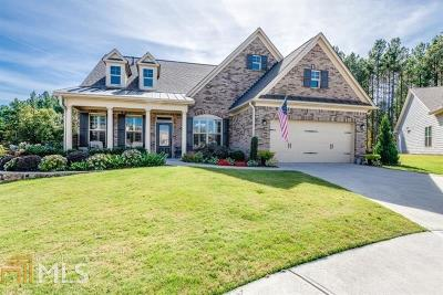 Canton Single Family Home For Sale: 324 Laurel Lookout Hills