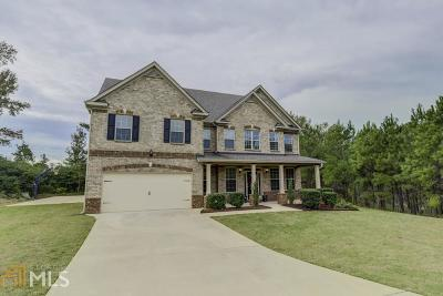 Henry County Single Family Home For Sale: 443 Union Grove Way