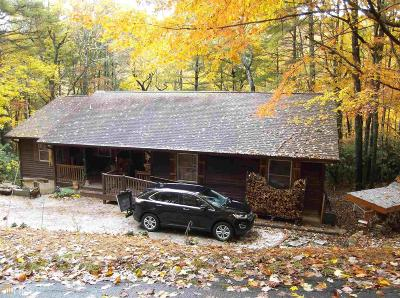 Rabun County Single Family Home For Sale: 36 Big Bear Trl