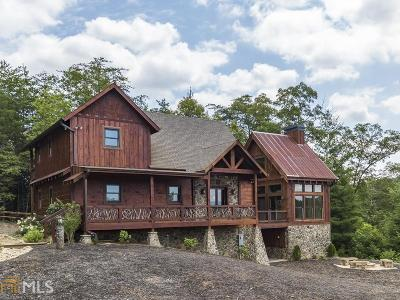 Fannin County Single Family Home For Sale: 100 Mountain Laurel Ridg