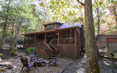 Blairsville Single Family Home For Sale: 186 Henry Young Ln
