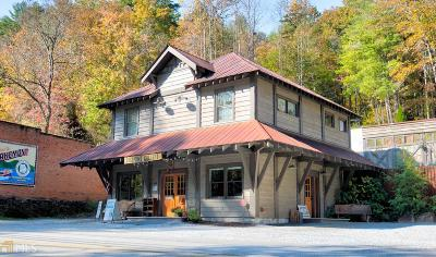 Rabun County Commercial For Sale: 8488 Old Highway 441 S