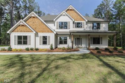 Newnan Single Family Home For Sale: Jim Starr Rd #8