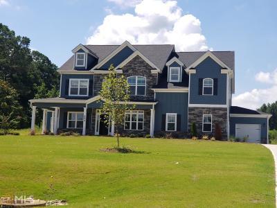McDonough Single Family Home New: 204 Ben Martin Trl