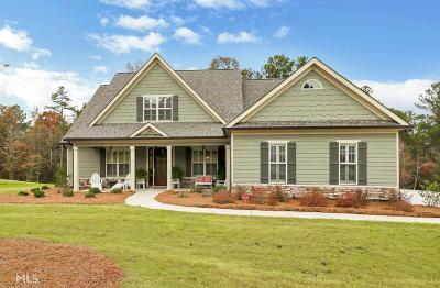 Fayette County Single Family Home New: 160 Discovery Lake Dr