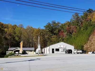 Rabun County Commercial For Sale: 1191 Old Hwy 441 N