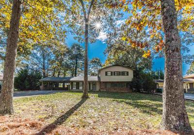 Snellville Single Family Home New: 4062 Scenic Mountain Dr