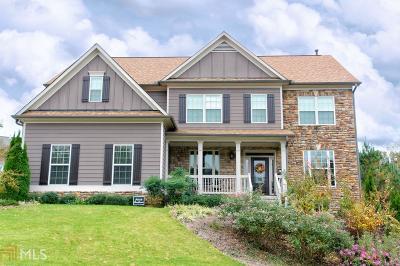 Villa Rica Single Family Home For Sale: 313 Hawks Ridge