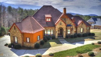 Alpharetta, Milton, Roswell Single Family Home For Sale: 1770 Cox Rd
