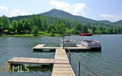 Hiawassee Single Family Home For Sale: 834 Lower Bell Creek