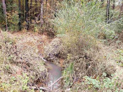 Lagrange Residential Lots & Land For Sale: Wehadkee Creek Rd