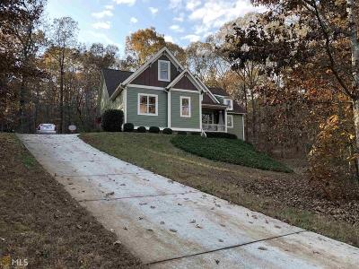 Dawsonville Single Family Home For Sale: 212 Candler Ln #6