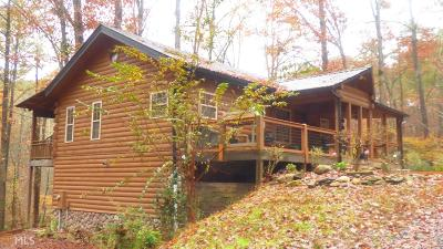 Ellijay Single Family Home For Sale: 91 Dixie Dr