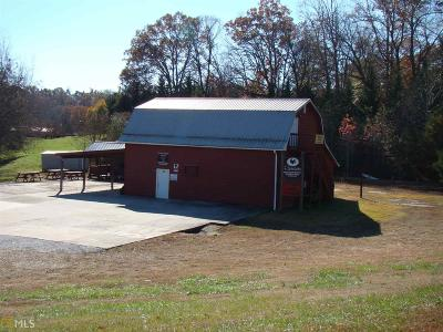 Habersham County Commercial For Sale: 5784 St Highway 115